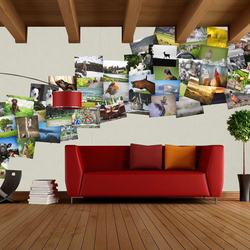 Create poster size collage